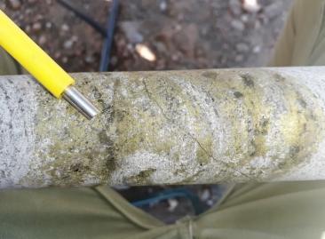 Chalcopyrite copper mineralisation in hole GOD001